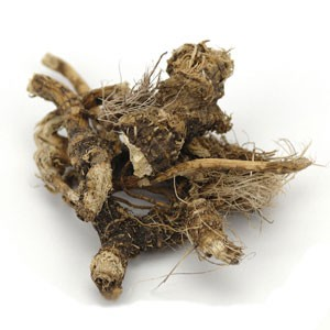 Osha Root Whole Wildcrafted